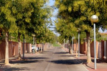 Paisajismo y urbanización